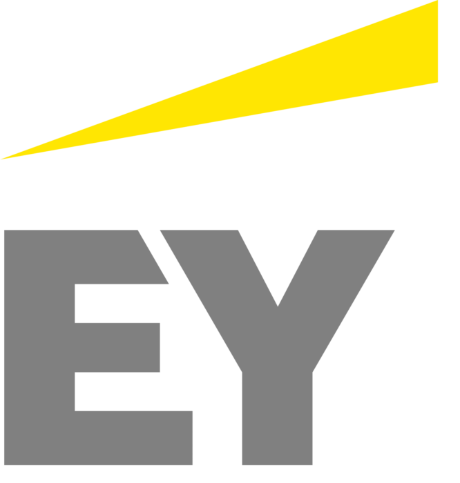 EY Internship Fast Track: Thesis Proposal